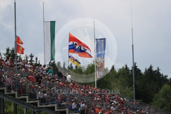 World © Octane Photographic Ltd. Formula 1 – Austrian GP - Qualifying. Flags at Turn 1. Red Bull Ring, Spielberg, Austria. Saturday 30th June 2018.