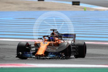 World © Octane Photographic Ltd. Formula 1 – French GP - Practice 1. McLaren MCL33 – Fernando Alonso. Circuit Paul Ricard, Le Castellet, France. Friday 22nd June 2018.
