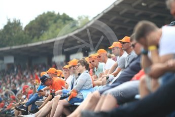 World © Octane Photographic Ltd. Formula 1 – German GP - Qualifying. Max Verstappen fans in the grandstands. Hockenheimring, Baden-Wurttemberg, Germany. Saturday 21st July 2018.