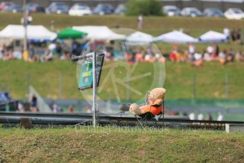 World © Octane Photographic Ltd. Formula 1 – Hungarian GP - Practice 1. Marshal bear. Hungaroring, Budapest, Hungary. Friday 2nd August 2019.