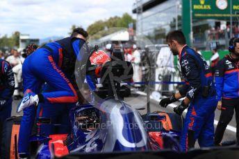 World © Octane Photographic Ltd. Formula 1 – Italian GP - Grid. Scuderia Toro Rosso STR14 – Daniil Kvyat. Autodromo Nazionale Monza, Monza, Italy. Sunday 8th September 2019.