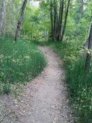 path of life purpose
