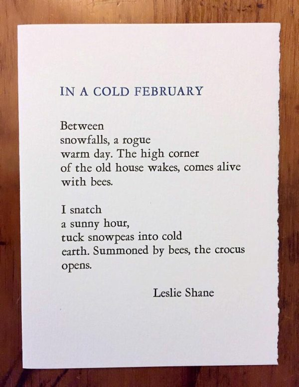 In a Cold February