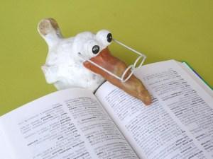 czytający ptak