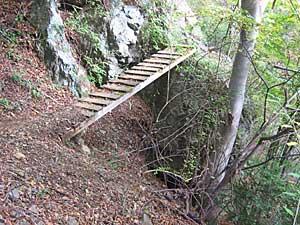 振り向けばそこに木橋