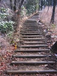 山頂直下の丸太階段を登ると・・・