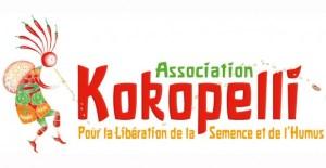 logoKokopelli-620x320