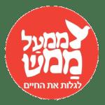 שמואל הראל יועץ ארגוני כלכלי (2)