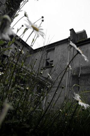 2006-04-20__mg_2324-m-1