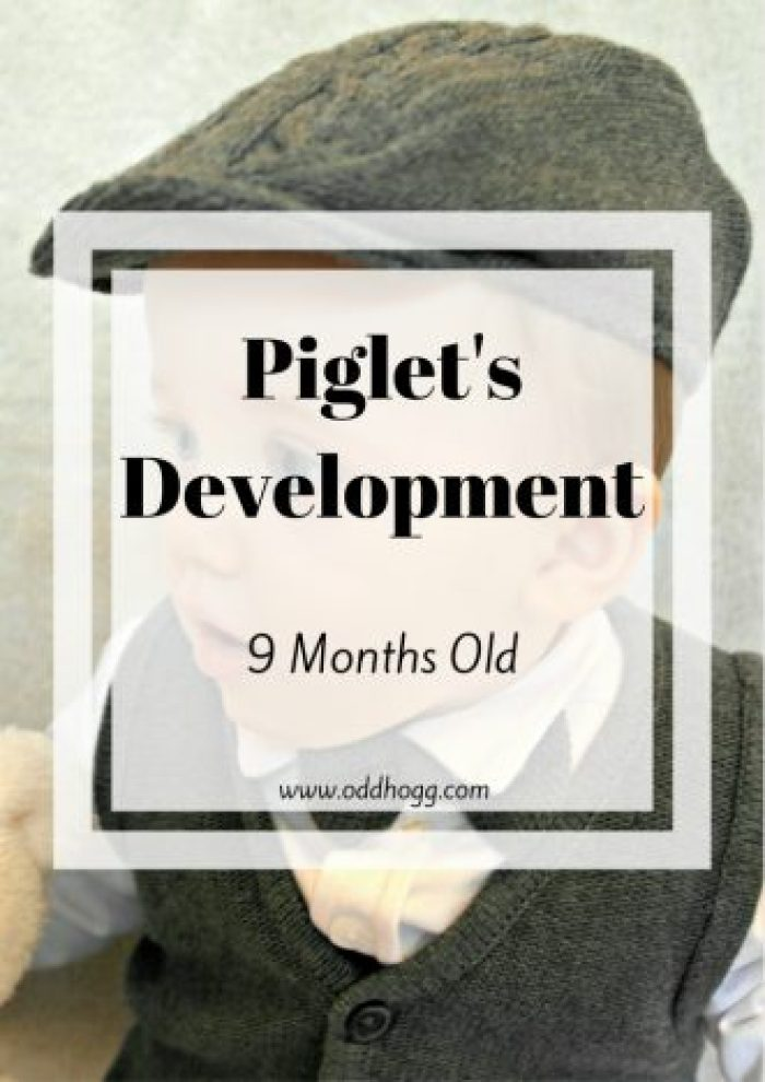Piglet 9 Month's Update | My son is now 9 months old. He is growing and changing every day. This update records his sleeping, feeding (breastfeeding and weaning) developmental milestones, words, likes and dislikes. It holds memories and is a record of his growth. http://oddhogg.com