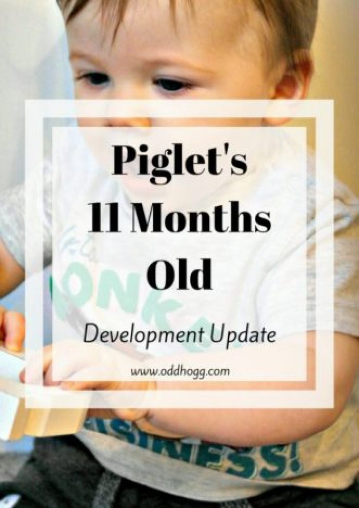 Piglet's 11 Months Update | So close to his first birthday, but not quite there yet. This mama is clinging on the the last of his babyhood for as long as she can! This month we talk about breastfeeding, weaning, growth, teething, hand foot and mouth and mobility. When will Piglet start walking? Have a read to find out if he's close! http://oddhogg.com