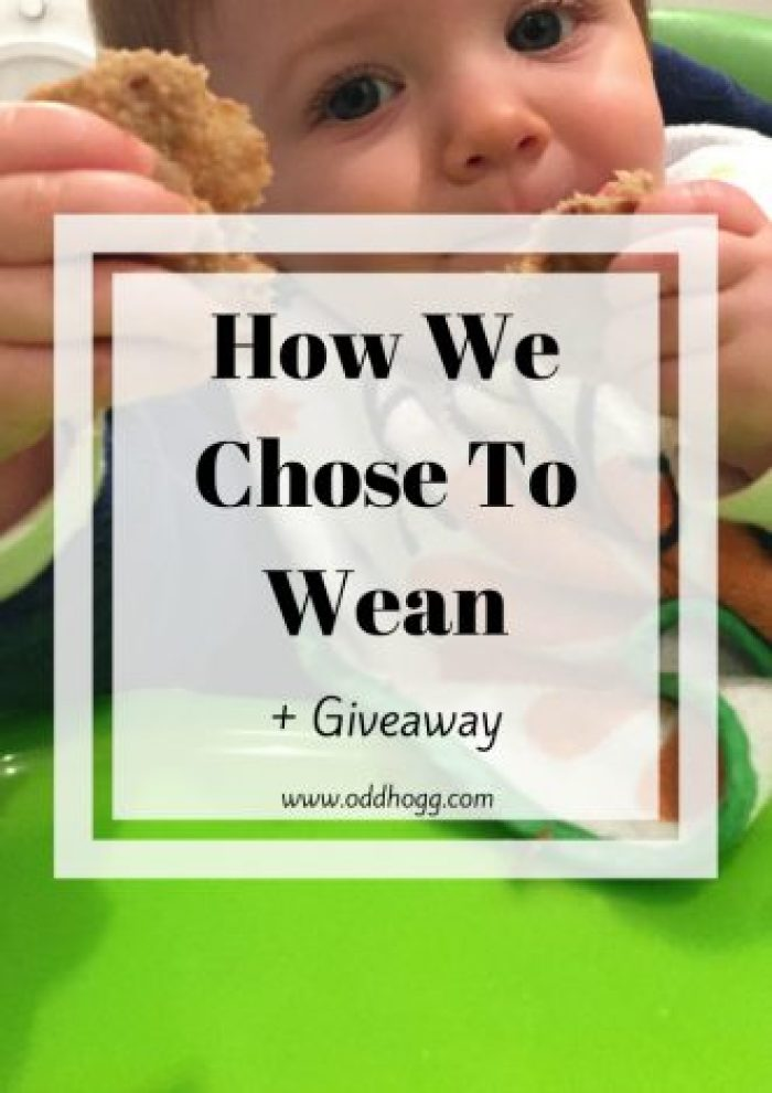 How We Chose To Wean | Weaning your baby can be a complete minefield. This post doesn't contain any tips or hints, it just states how we did it. I don't believe there is a one size fits all solution for weaning, whether it is baby led weaning or purees, you just have to muddle along like the rest of us! http://oddhogg.com