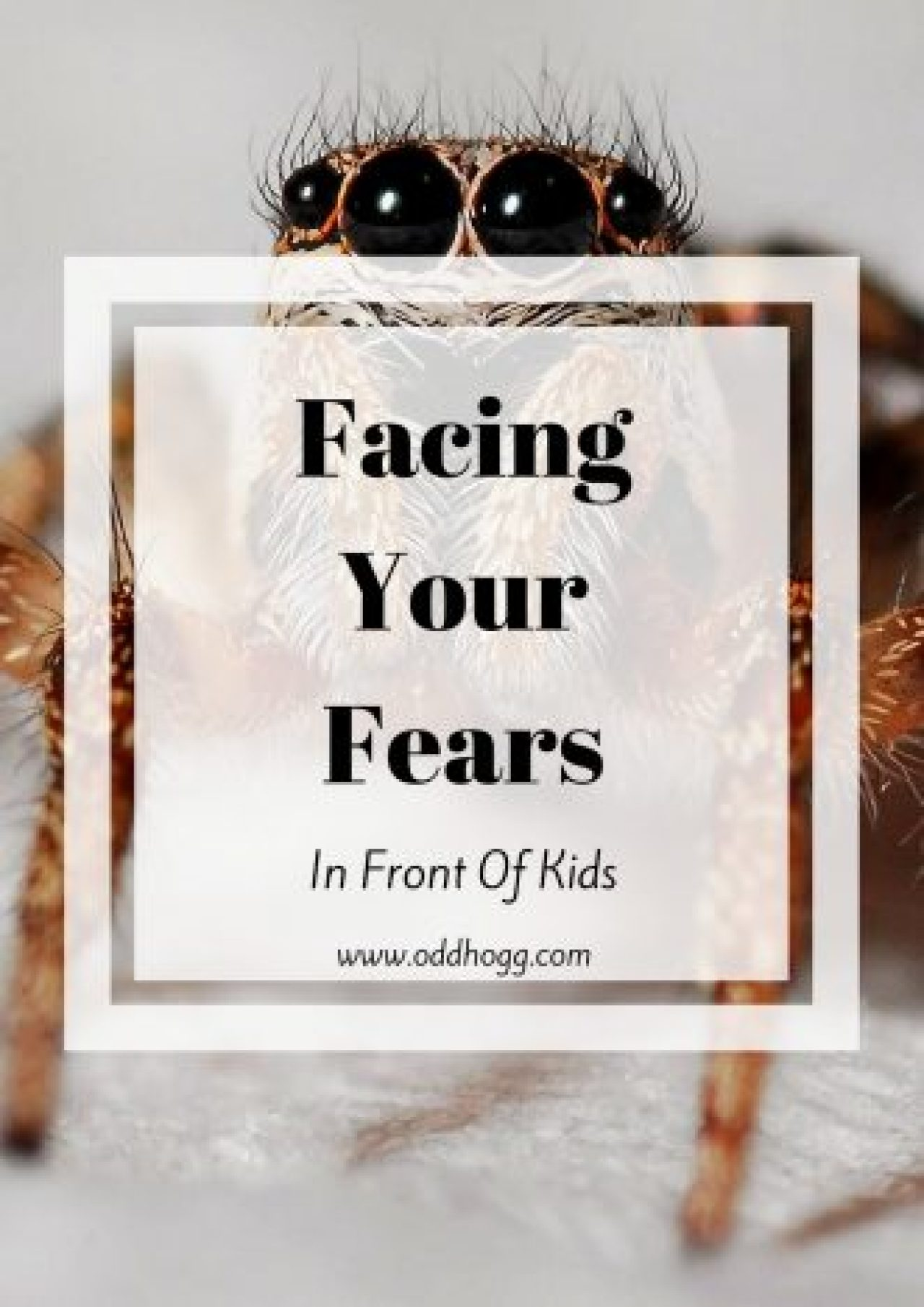 Facing Your Fears In Front Of Kids | We've all had that moment where we're terrified of something and want to run screaming. I'm trying to reign it in in front of my son but it is tough when you're scared! http://oddhogg.com