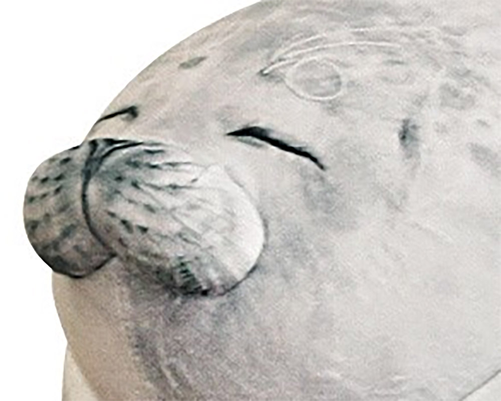 this blob seal pillow might be the