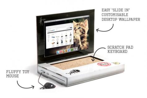 Image result for Cat Scratch Laptop.