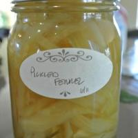 Pickled Fennel – Canning Recipe