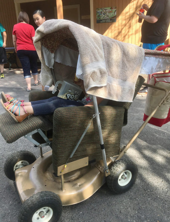 Chilling in a homemade stroller, seen in North Idaho
