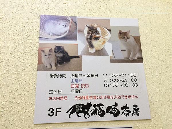 cat151120_3