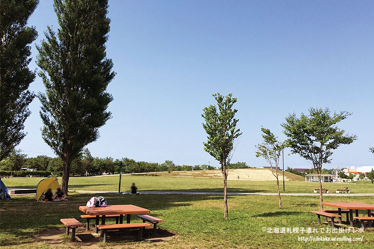 ishikarinomoripark_5