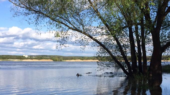 Oderland Oderlandblog