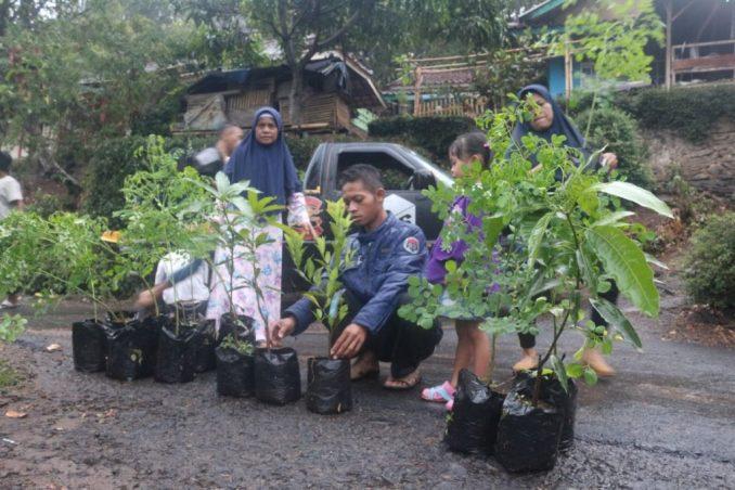 pembibitan-odesa-indonesia