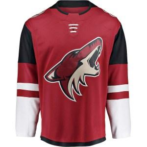 Купить хоккейный свитер Аризоны