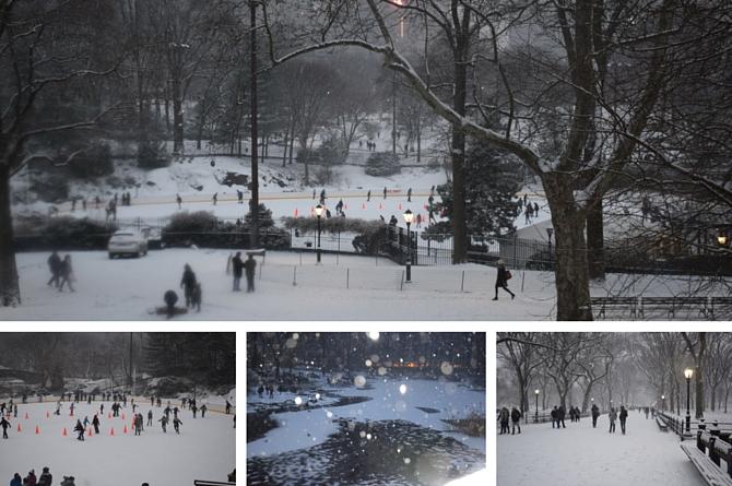 central-park-nova-yotk-odiadalila-2