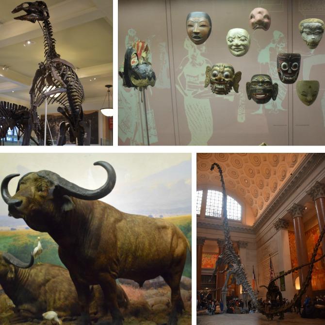 museu-de-história-natural-NY-odiadalila 2
