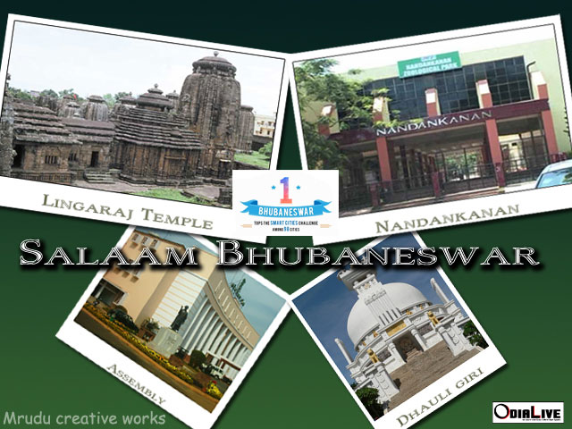 bhubaneswar-smart-city-2