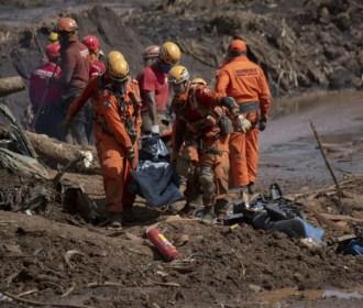 Tragédia de Brumadinho devastou 133 hectares de Mata Atlântica