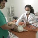 Braskem e UFAL vão desenvolver programa de cuidado de animais nos bairros de Maceió
