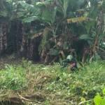 Carro capota e duas ocupantes ficam feridas na zona rural da Barra de Santo Antônio