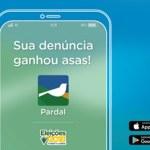 Aplicativo Pardal permite denunciar propaganda eleitoral irregular