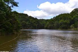 Denúncia de crime ambiental em área de reserva chega ao Ministério Público de Pernambuco