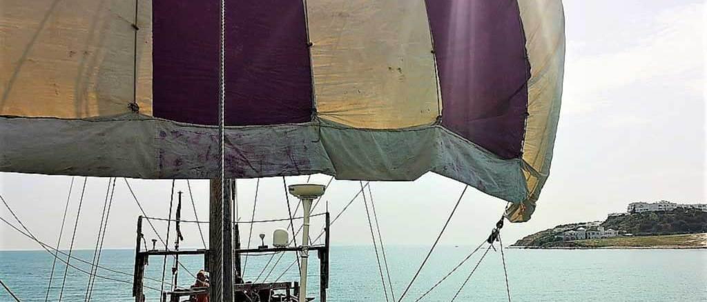 Phoenicia at sail