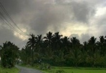 Titli turns into a severe cyclonic storm