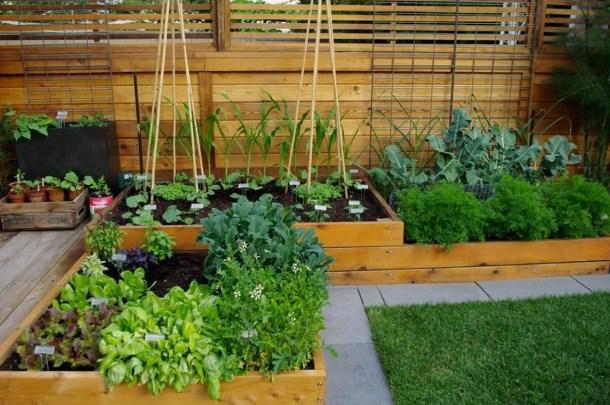 небольшой огород