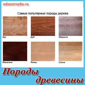 редкие породы древесины