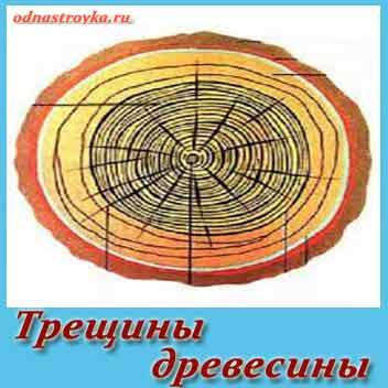 трещины древесины