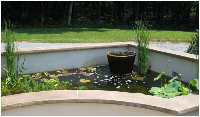 декоративный пруд с растениями и рыбой