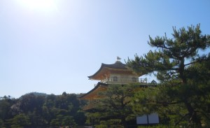 島村 見学旅行ブログ用写真
