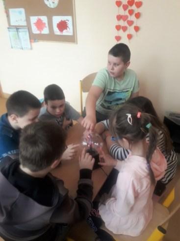 Publiczna Szkoła Podstawowa Specjalna w Szydłowcu