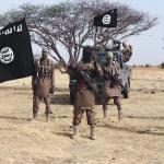 12 Year Old Suicide Bomber Kills 4 In Borno
