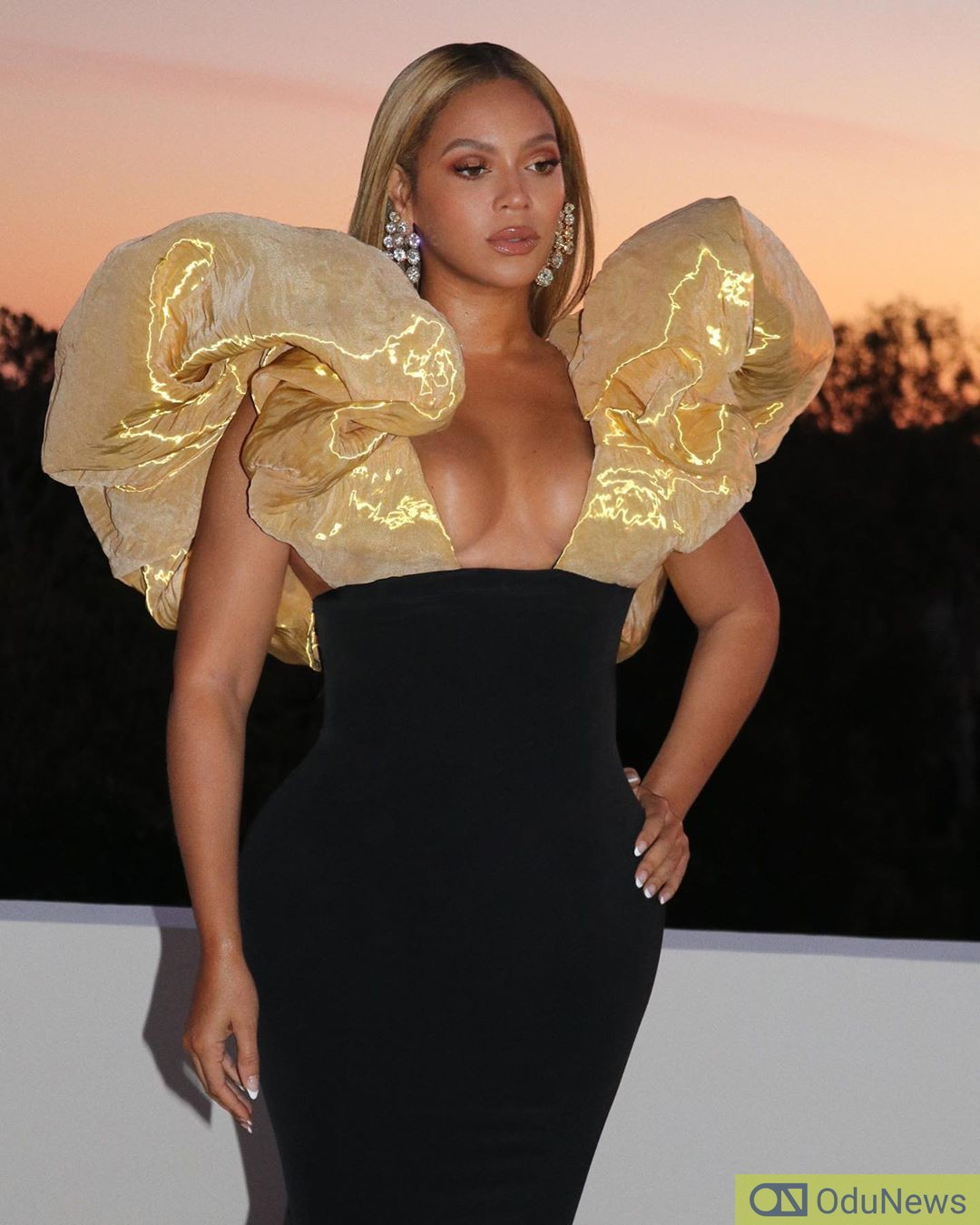 beyonce makes her first 2020 appearance