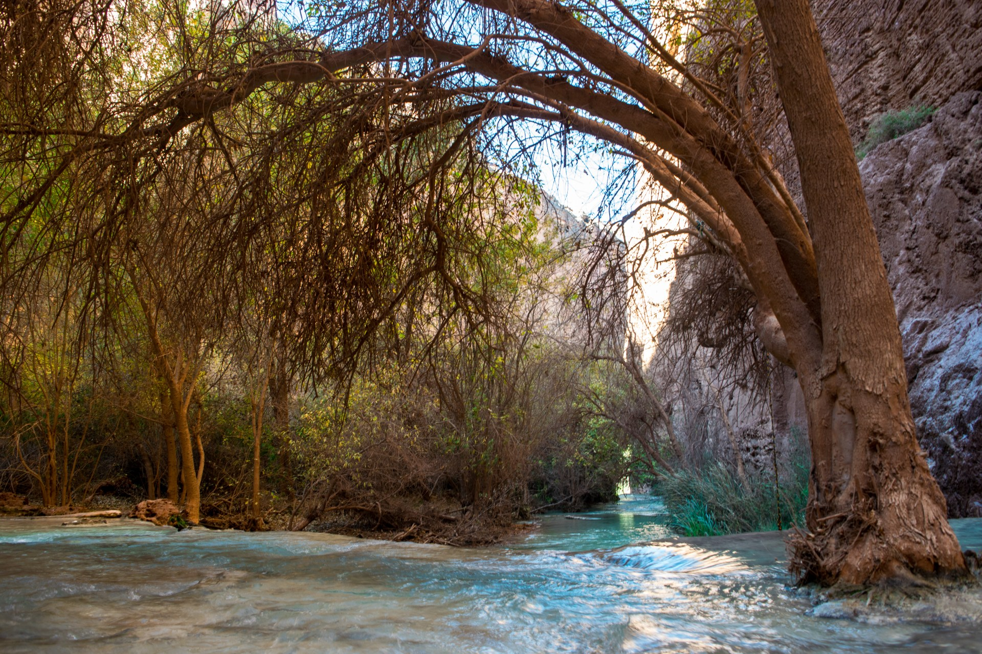 backpacking-havasupai-post-edit-1-of-1-3