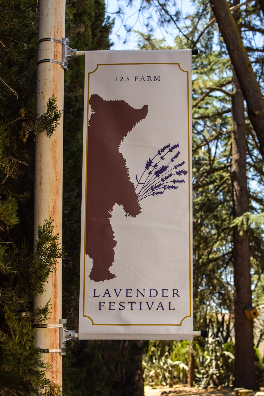 Odyssey Designs Lavender Festival 2017_-9