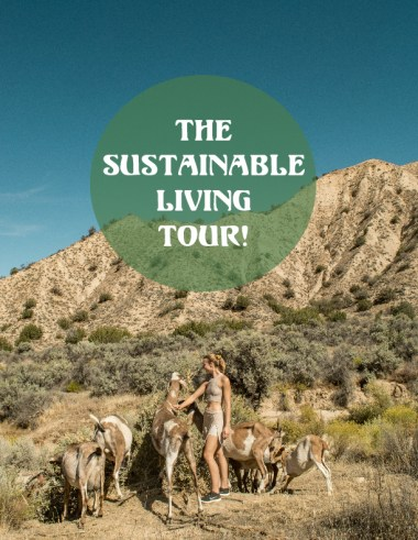 What is The Sustainable Living Tour by Odyssey Designs!