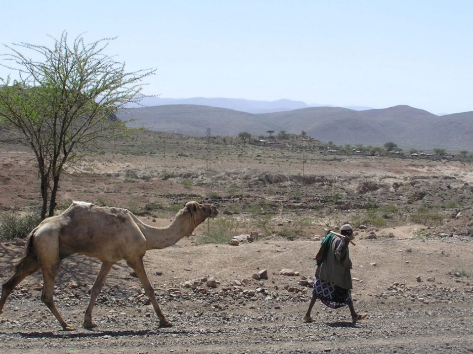 the road to Harar