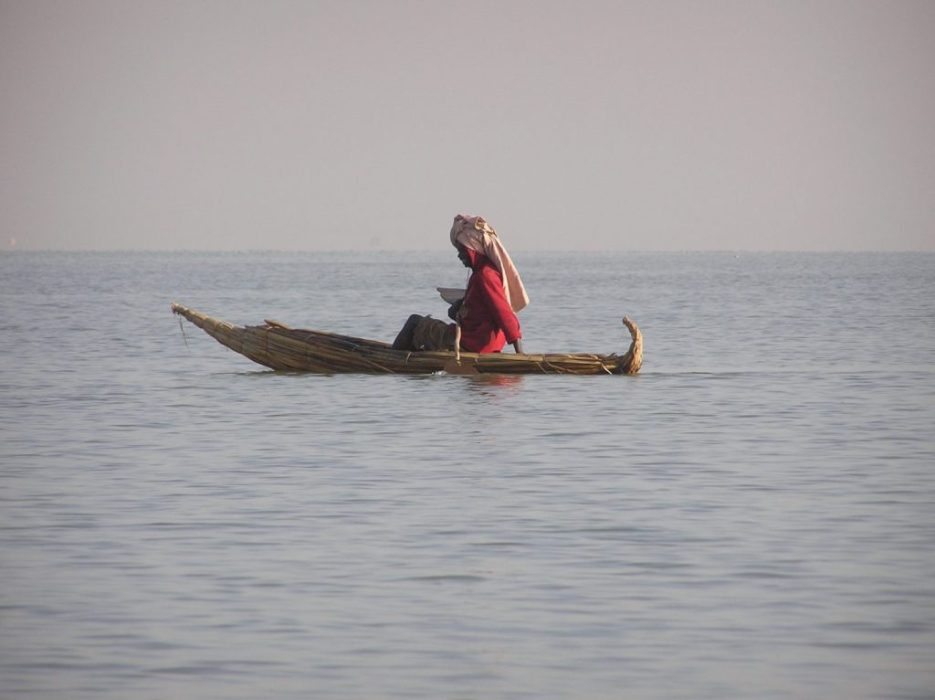 fishing in a reed boat