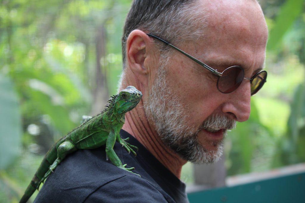at the iguana sanctuary